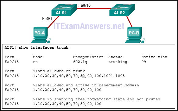 CCNA 2 (v5.0.3 + v6.0) Chapter 6 Exam Answers 2020 - 100% Full 1