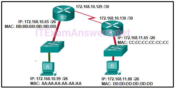 CCNA 1 Final Exam Answers 2019 (v5.1+v6.0) Introduction to Networks 44