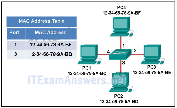 CCNA 1 (v5.1 + v6.0) Chapter 5 Exam Answers 2020 - 100% Full 1