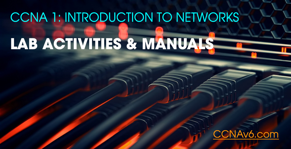 CCNA 1: Activities & Lab Manuals Packet Tracer Instructions Answers 2