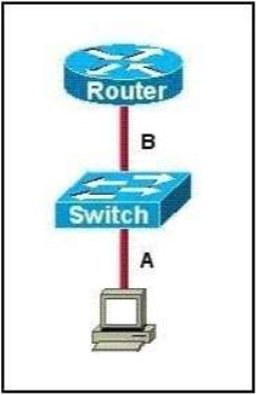 CCNA 200-125 Certification Practice Exam Answers - Update New Questions 7