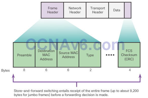 CCNA 2 v6.0 Study Material – Chapter 4: Introduction to Switched Networks 24