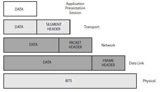 Section 1 – Networks, Cables, OSI, and TCPModels 72