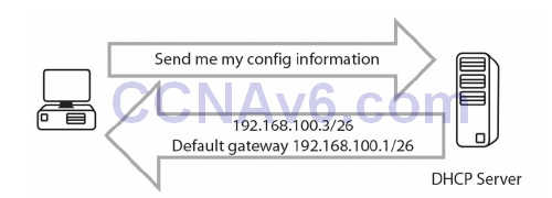 Section 14 – DHCP and DNS 11