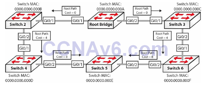 Section 31 – Spanning Tree Protocol 30