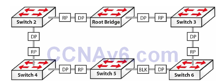 Section 31 – Spanning Tree Protocol 31