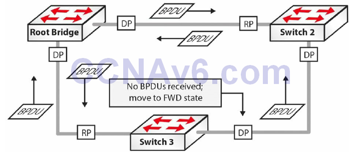 Section 31 – Spanning Tree Protocol 36