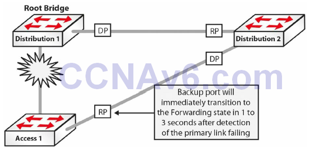 Section 31 – Spanning Tree Protocol 39