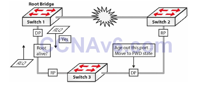 Section 31 – Spanning Tree Protocol 41