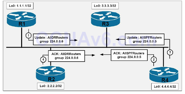 Section 39 – OSPF 1