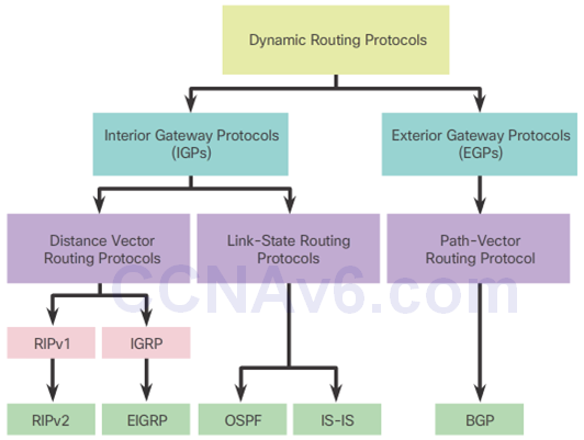 CCNA 3 v6.0 Study Material – Chapter 5: Dynamic Routing 5