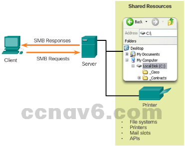 CCNA 1 v6.0 Study Material - Chapter 10: Application Layer 16