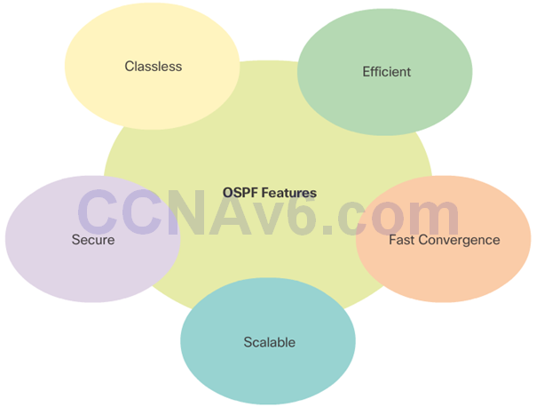 CCNA 3 v6.0 Study Material – Chapter 8: Single-Area OSPF 20