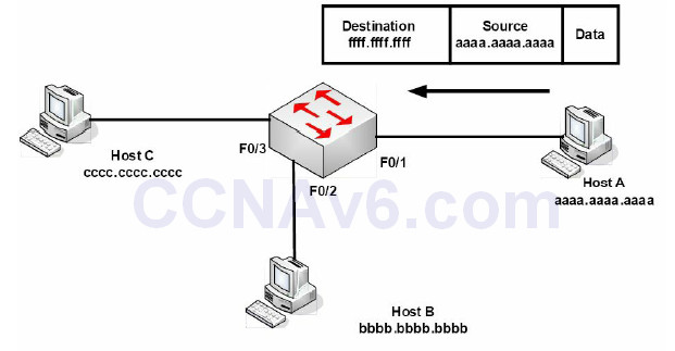 Section 2 – CSMA/CD, Switching, and VLANs 38