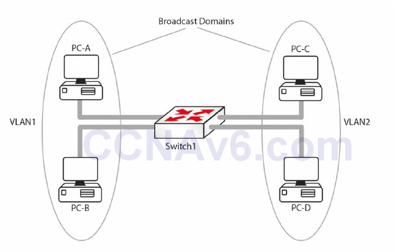 Section 2 – CSMA/CD, Switching, and VLANs 41
