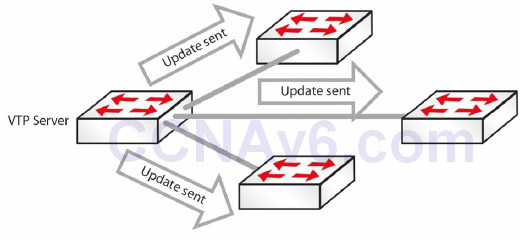 Section 3 – Trunking, DTP, and Inter-VLAN Routing 12