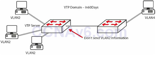 Section 3 – Trunking, DTP, and Inter-VLAN Routing 13
