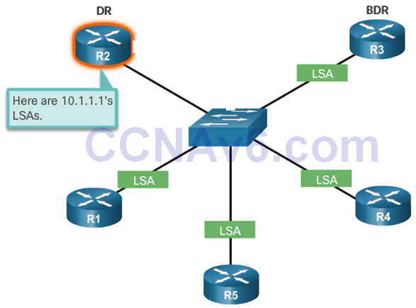 CCNA 3 v6.0 Study Material – Chapter 10: OSPF Tuning and Troubleshooting 10
