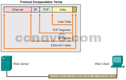 CCNA 1 v6.0 Study Material - Chapter 3: Network Protocols and Communications 13