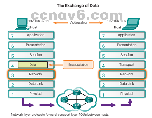 CCNA 1 v6.0 Study Material - Chapter 6: Network Layer 14