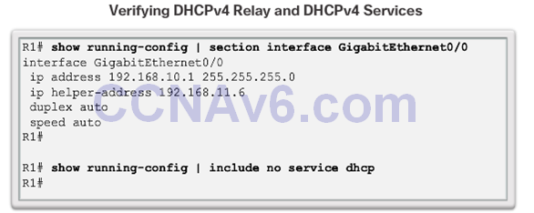 CCNA 2 v6.0 Study Material – Chapter 8: DHCP 50