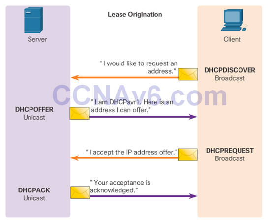 CCNA 2 v6.0 Study Material – Chapter 8: DHCP 38