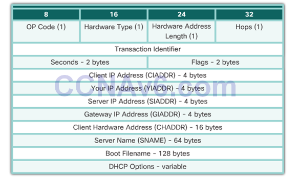 CCNA 2 v6.0 Study Material – Chapter 8: DHCP 40