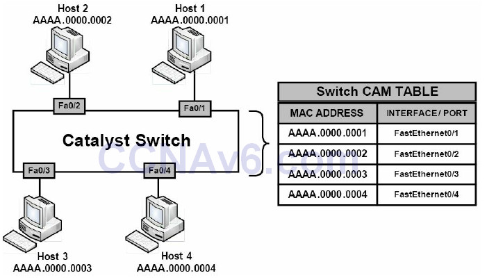 Section 4 – Router and Switch Security 14