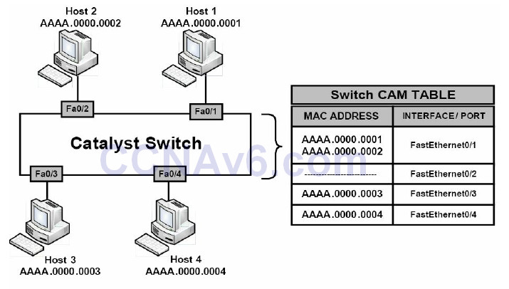 Section 4 – Router and Switch Security 15