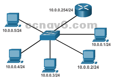 CCNA 1 v6.0 Study Material - Chapter 11: Build a Small Network 44