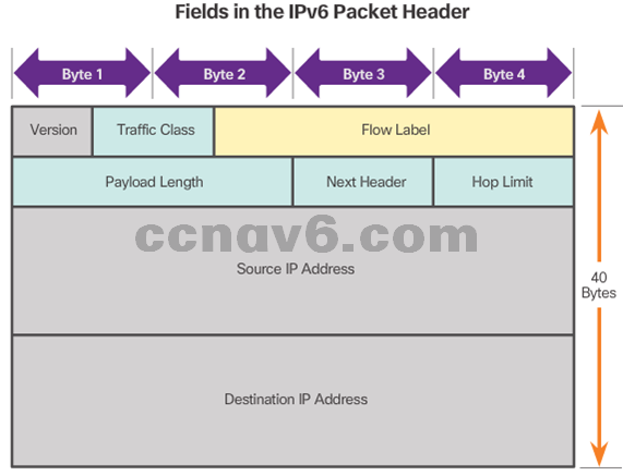 CCNA 1 v6.0 Study Material - Chapter 6: Network Layer 18