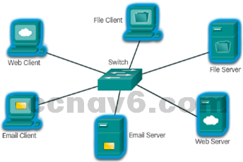 CCNA 1 v6.0 Study Material - Chapter 1: Explore the Network 29