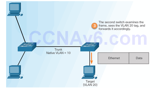 CCNA Security 2.0 Study Material – Chapter 6: Securing the Local Area Network 120