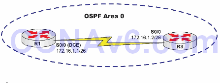 Lab 77: Configuring the OSPF Router ID Manually 1
