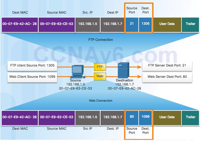 Introduction to Networks 6.0 Instructor Materials – Chapter 9: Transport Layer 81