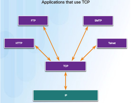 Introduction to Networks 6.0 Instructor Materials – Chapter 9: Transport Layer 113