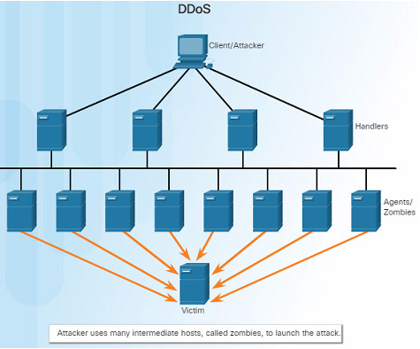 Introduction to Networks 6.0 Instructor Materials – Chapter 11: Build a Small Network 88