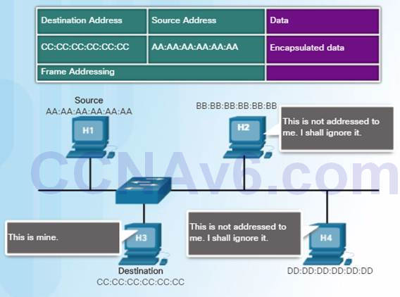 Introduction to Networks 6.0 Instructor Materials – Chapter 5: Ethernet 49