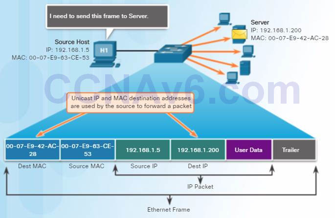 Introduction to Networks 6.0 Instructor Materials – Chapter 5: Ethernet 51