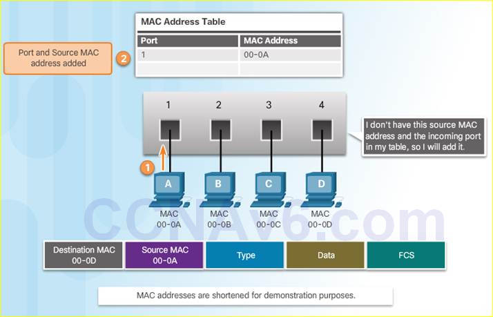 Introduction to Networks 6.0 Instructor Materials – Chapter 5: Ethernet 56