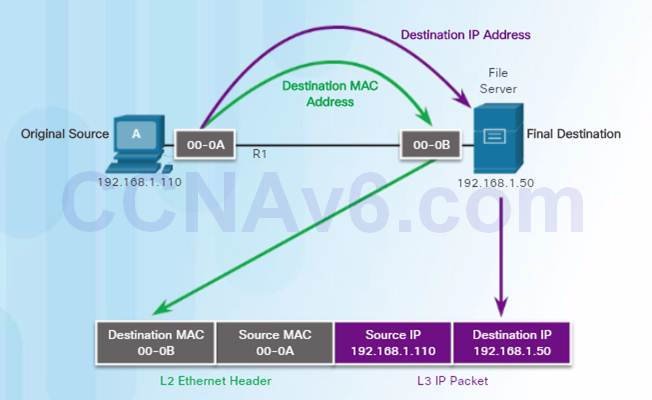 Introduction to Networks 6.0 Instructor Materials – Chapter 5: Ethernet 68