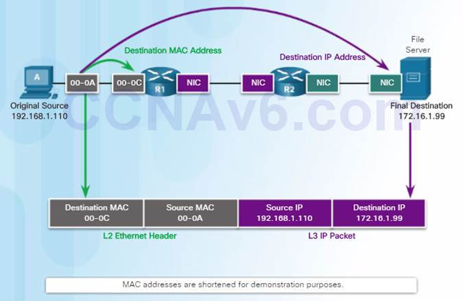 Introduction to Networks 6.0 Instructor Materials – Chapter 5: Ethernet 380