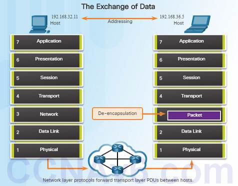 Introduction to Networks 6.0 Instructor Materials – Chapter 6: Network Layer 60