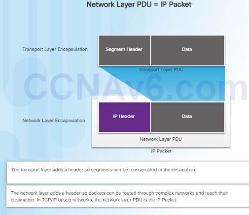 Introduction to Networks 6.0 Instructor Materials – Chapter 6: Network Layer 62