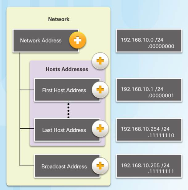 Introduction to Networks 6.0 Instructor Materials – Chapter 7: IP Addressing 20