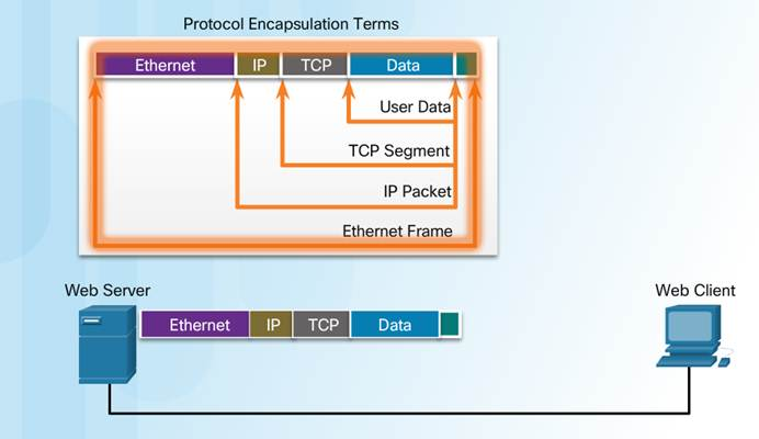 Introduction to Networks 6.0 Instructor Materials – Chapter 3: Network Protocols and Communication 58