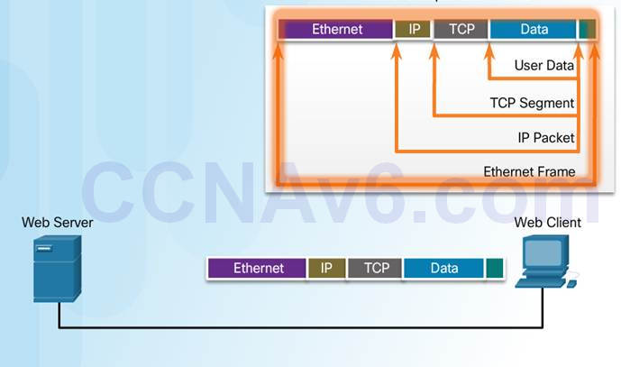 Introduction to Networks 6.0 Instructor Materials – Chapter 3: Network Protocols and Communication 59