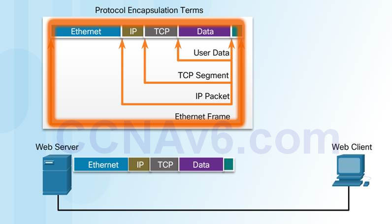 Introduction to Networks 6.0 Instructor Materials – Chapter 3: Network Protocols and Communication 71