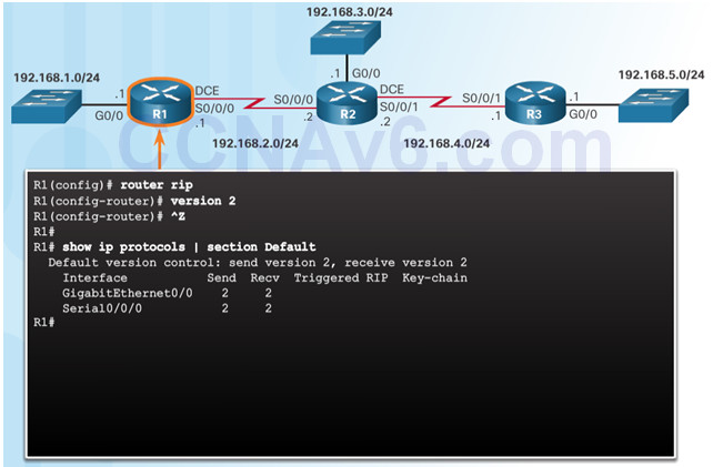 Routing and Switching Essentials 6.0 Instructor Materials – Chapter 3: Dynamic Routing 50