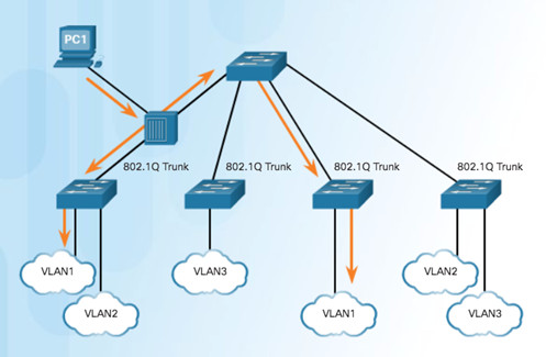 Routing and Switching Essentials 6.0 Instructor Materials – Chapter 6: VLANs 78